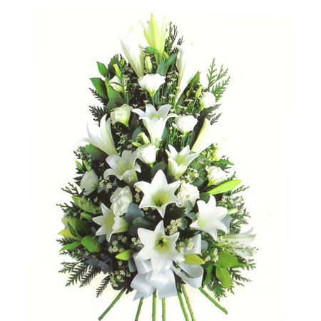 Natural Spray With Stems Including Lily, Carnation & Lisianthus Reference: SYM1