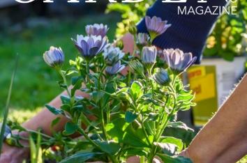 Garden Centre Magazine